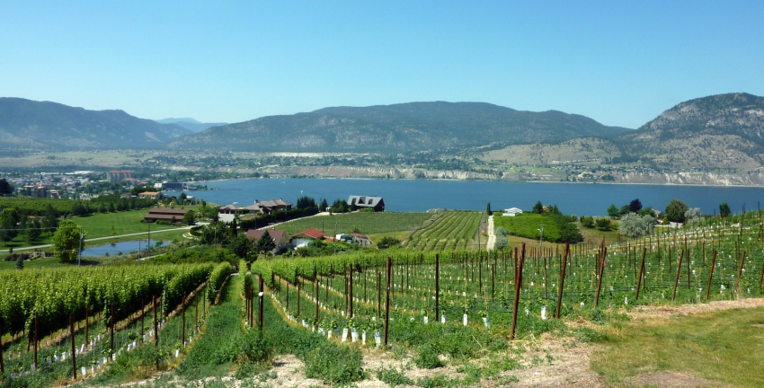 BC Wine Country