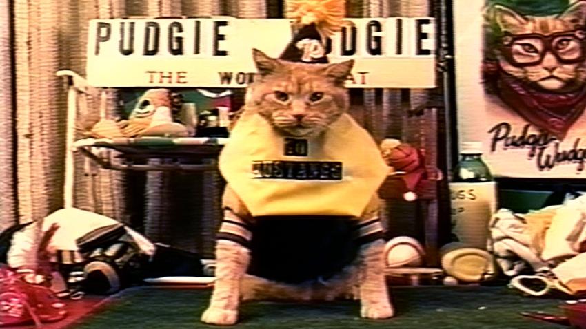Frank and the Wondercat. Image courtesy VIFF
