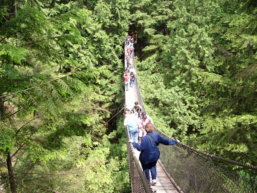 Lynn Canyon suspension bridge: just one of many of the city's free or nearly fre