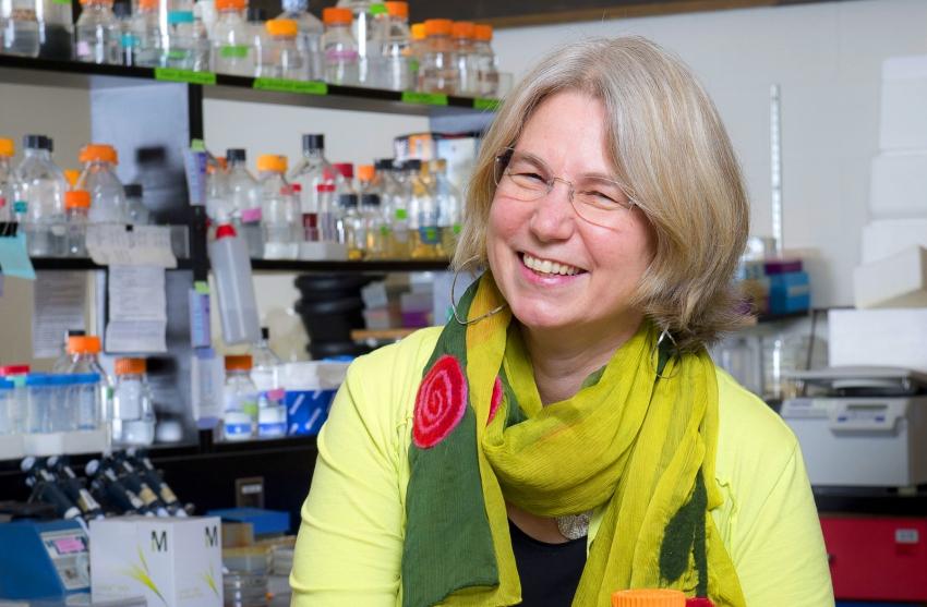 Lynne Quarmby SFU Biochemistry Professor and Kinder Morgan lawsuit defendant