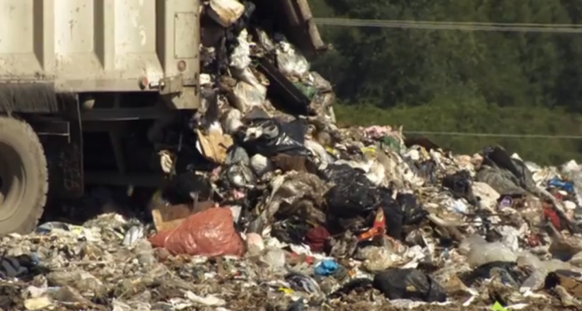 Food waste to be separated from garbage in 2015