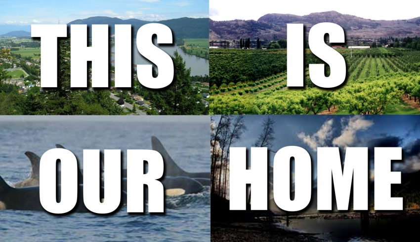 Local rally to stop pipeline development