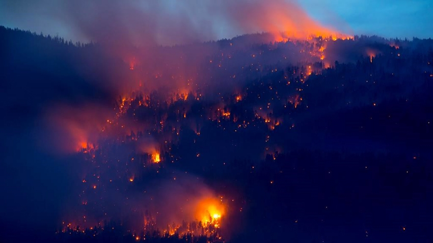 Kelowna wildfire, July 2015. Canadian Press photo