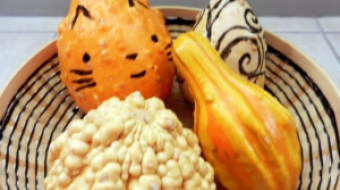 Take time to enjoy fall with all the Vancouver food events