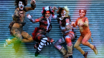 CATS at Jericho Theatre