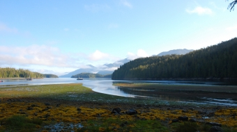 Barnard Harbour, in the Great Bear Rainforest. Photo by Dogwood Initiative