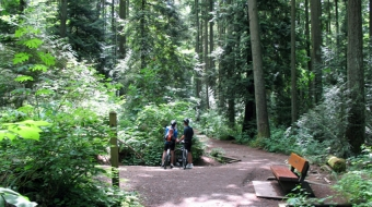 Pacific Spirit Park, UBC. Photo from vancouvertrails.com