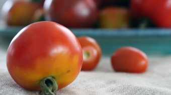 Learn to save tomato seeds for next year's garden.