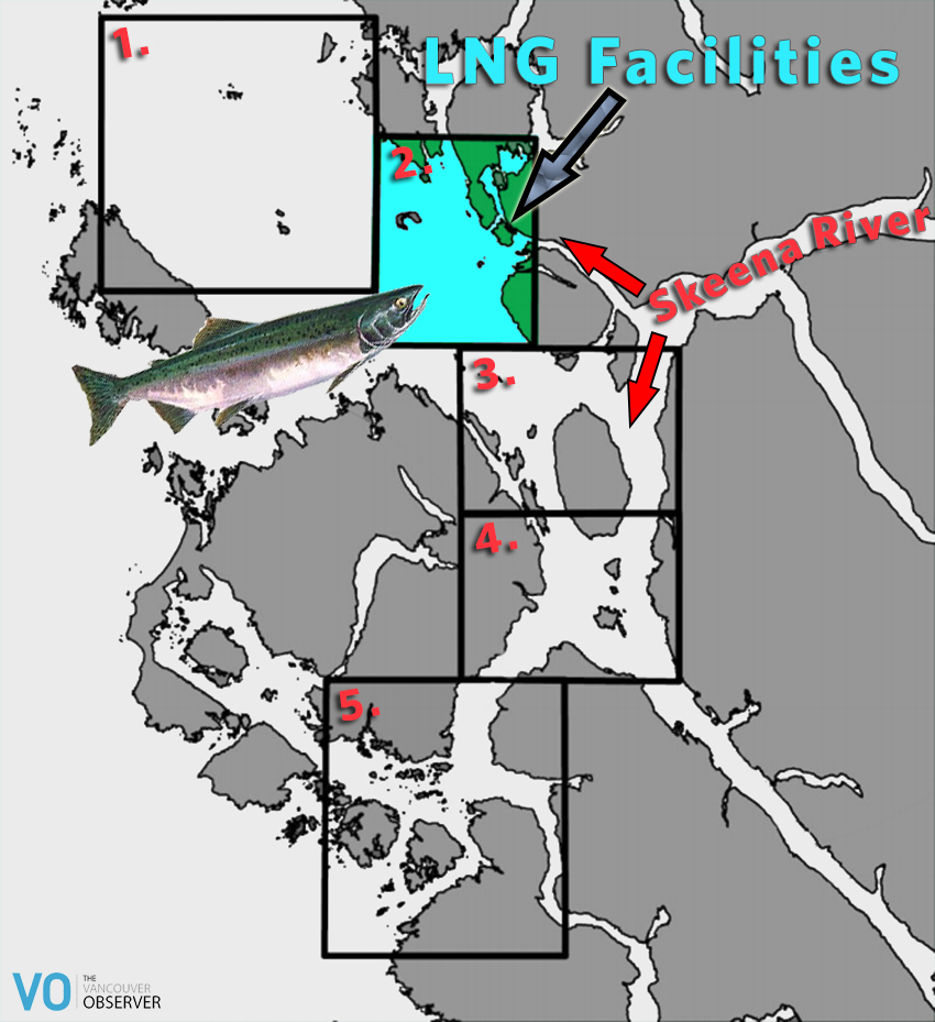 Skeena watershed salmon study LNG location map - Vancouver Observer