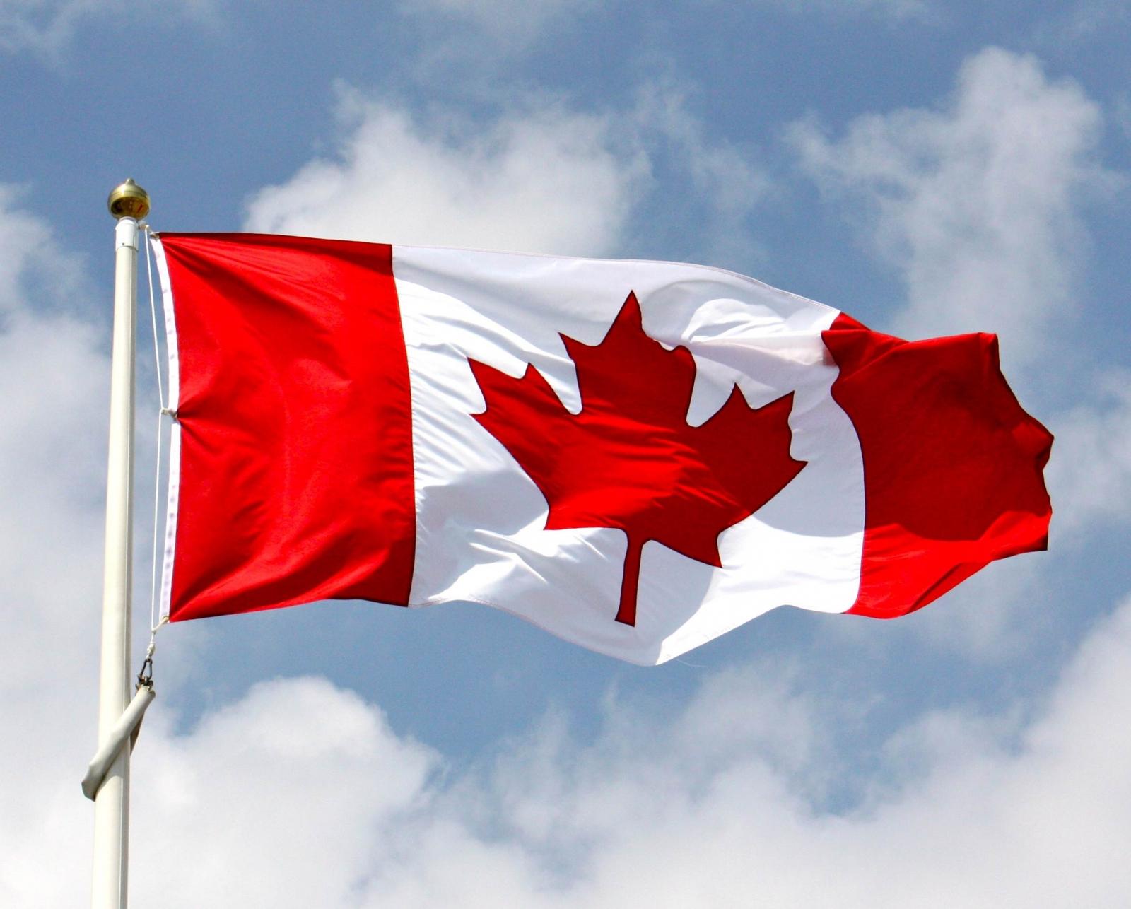 Image result for Canada electoral observer