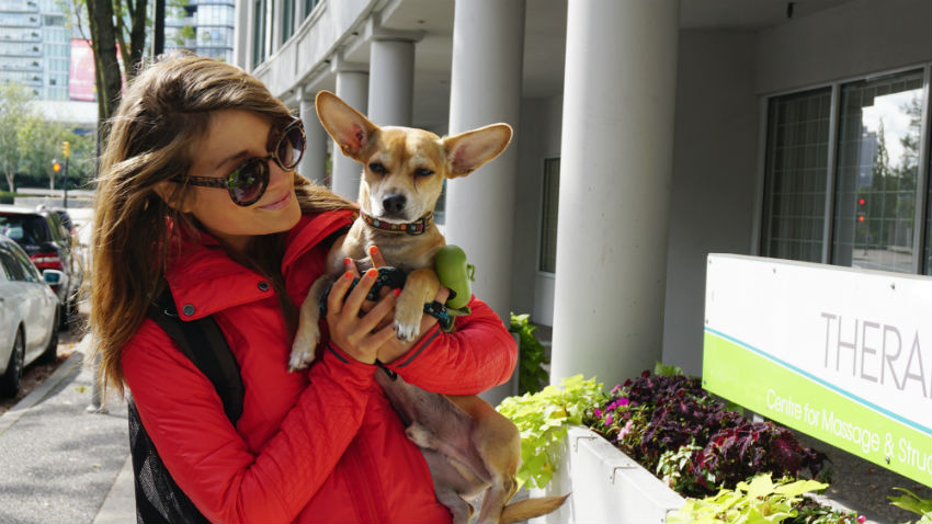 Yaletown, Vancouver, downtown Vancouver, dog walking, seawall, Pacific Boulevard