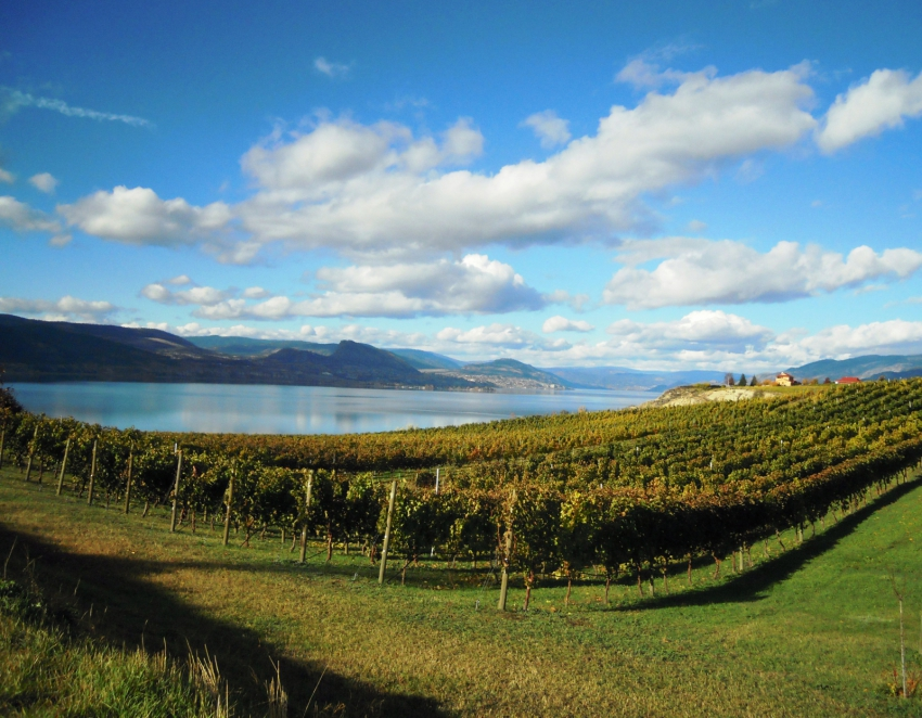Plan a 'green getaway' to the Okanagan