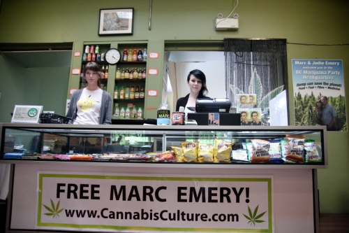 marijuana in canada essay